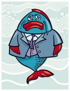 leader fish